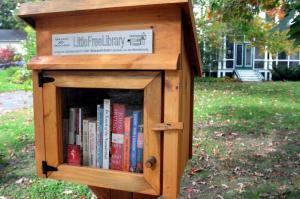 lilttle library